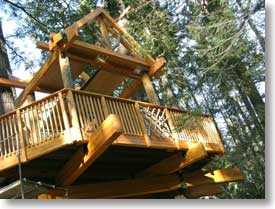 Universally Accessible Treehouse