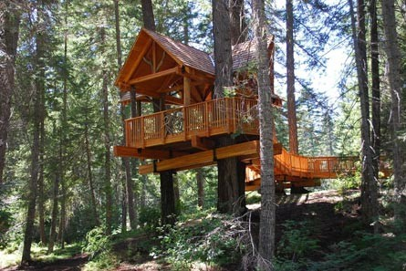 Accessible Tree House