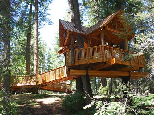 Handicapped Accessible Treehouse